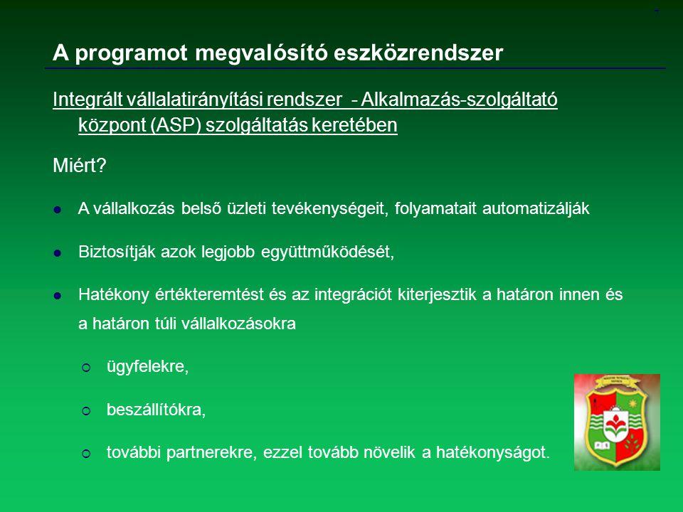 7 A programot megvalósító eszközrendszer Integrált vállalatirányítási rendszer - Alkalmazás-szolgáltató központ (ASP) szolgáltatás keretében Miért? A
