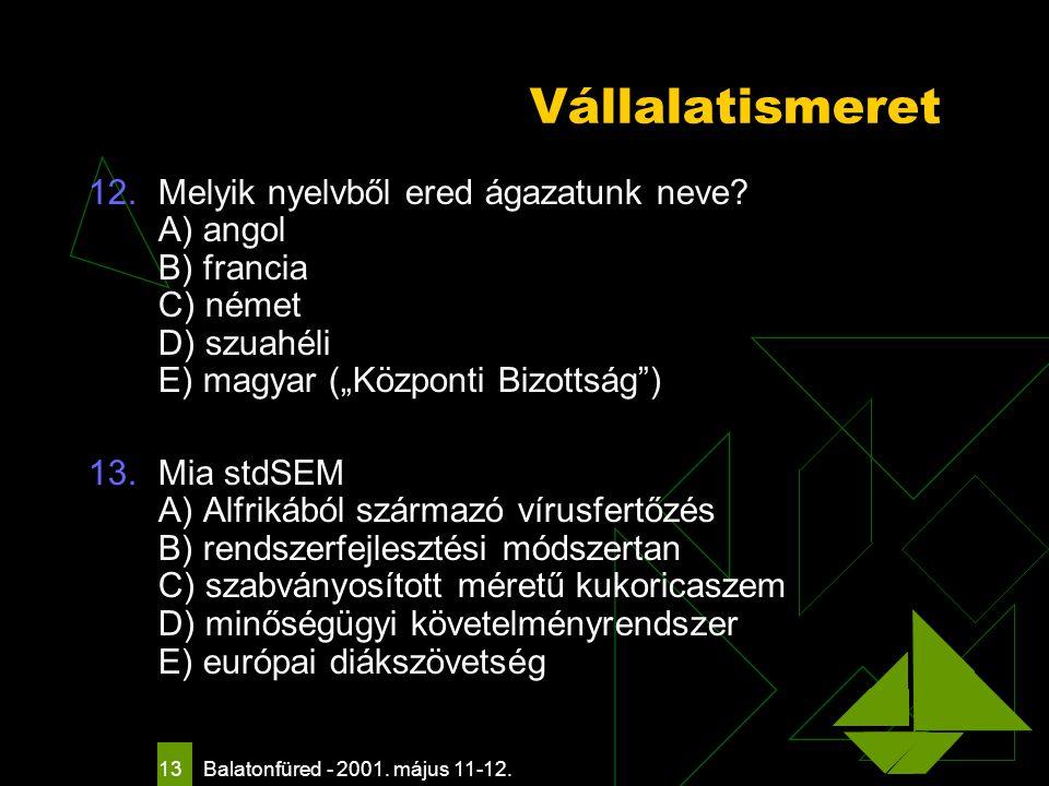Balatonfüred - 2001. május 11-12. 13 Vállalatismeret 12.