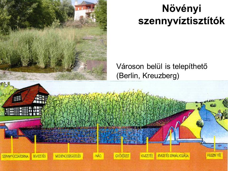 2010 július 22 Növényi szennyvíztisztítók Városon belül is telepíthető (Berlin, Kreuzberg)