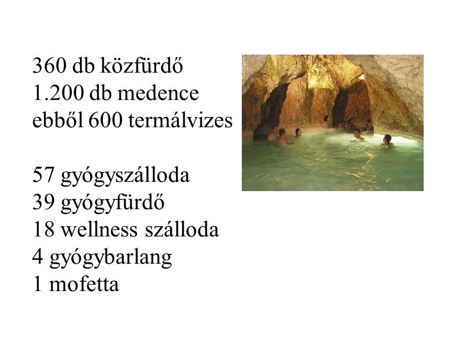 360 db közfürdő 1.200 db medence ebből 600 termálvizes 57 gyógyszálloda 39 gyógyfürdő 18 wellness szálloda 4 gyógybarlang 1 mofetta