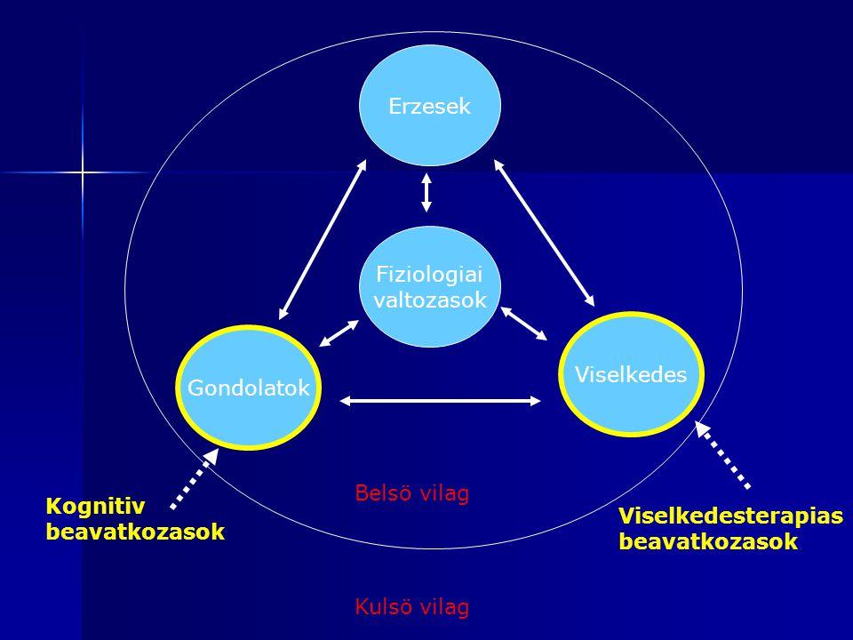 Mindfulness – a tudatos jelenlet Amikor stresszhelyzetnek vagyunk kiteve menekulöreakcioval reagalunk, amire atuleles erdekeben van szukseg.