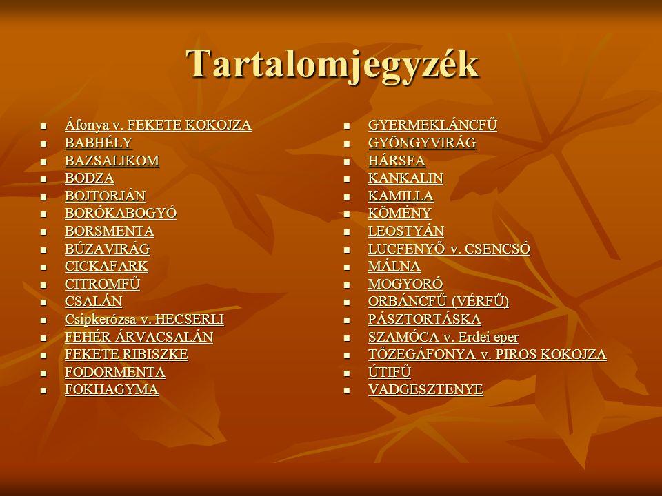 Tartalomjegyzék Áfonya v.FEKETE KOKOJZA Áfonya v.