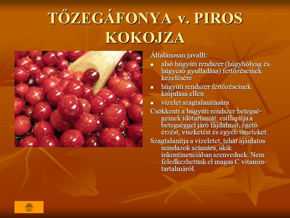 TŐZEGÁFONYA v. PIROS KOKOJZA Általánosan javallt: alsó húgyúti rendszer (húgyhólyag és húgycső gyulladása) fertőzéseinek kezelésére alsó húgyúti rends