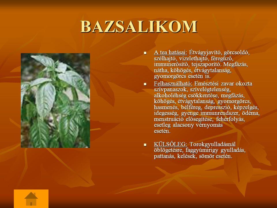 BAZSALIKOM A tea hatásai: Étvágyjavító, görcsoldó, szélhajtó, vizelethajtó, féregűző, immunerősítő, tejszaporító.