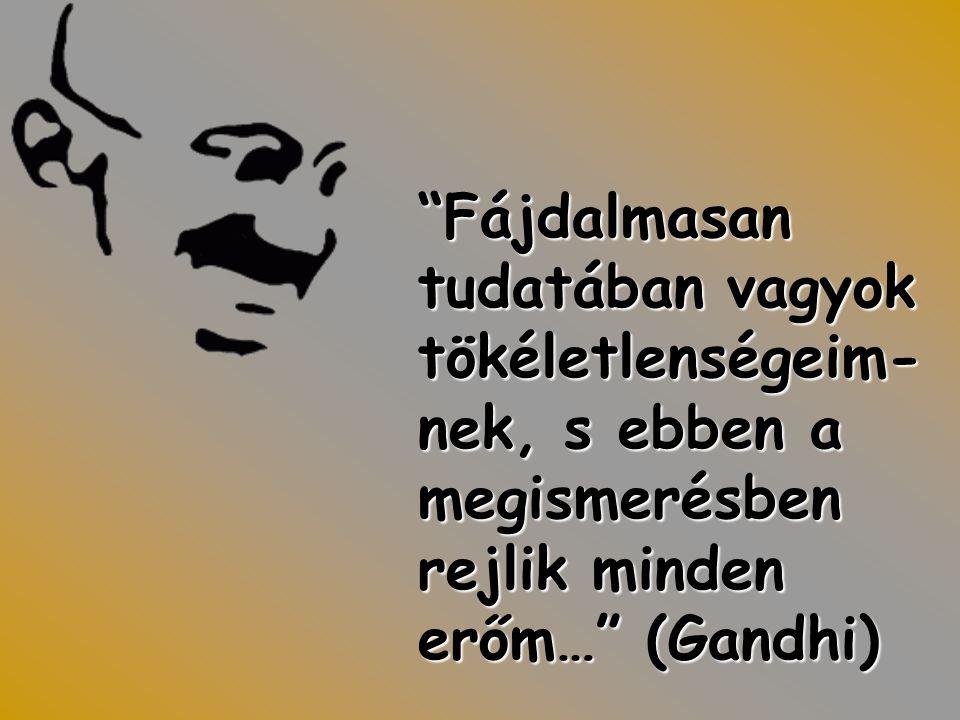 Fájdalmasan tudatában vagyok tökéletlenségeim- nek, s ebben a megismerésben rejlik minden erőm… (Gandhi)