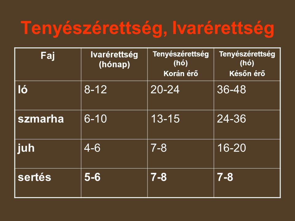 Tenyészérettség, Ivarérettség Faj Ivarérettség (hónap) Tenyészérettség (hó) Korán érő Tenyészérettség (hó) Későn érő ló8-1220-2436-48 szmarha6-1013-1524-36 juh4-67-816-20 sertés5-67-8