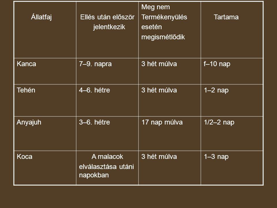 ÁllatfajEllés után először jelentkezik Meg nem Termékenyülés esetén megismétlődik Tartama Kanca7–9. napra3 hét múlvaf–10 nap Tehén4–6. hétre3 hét múlv