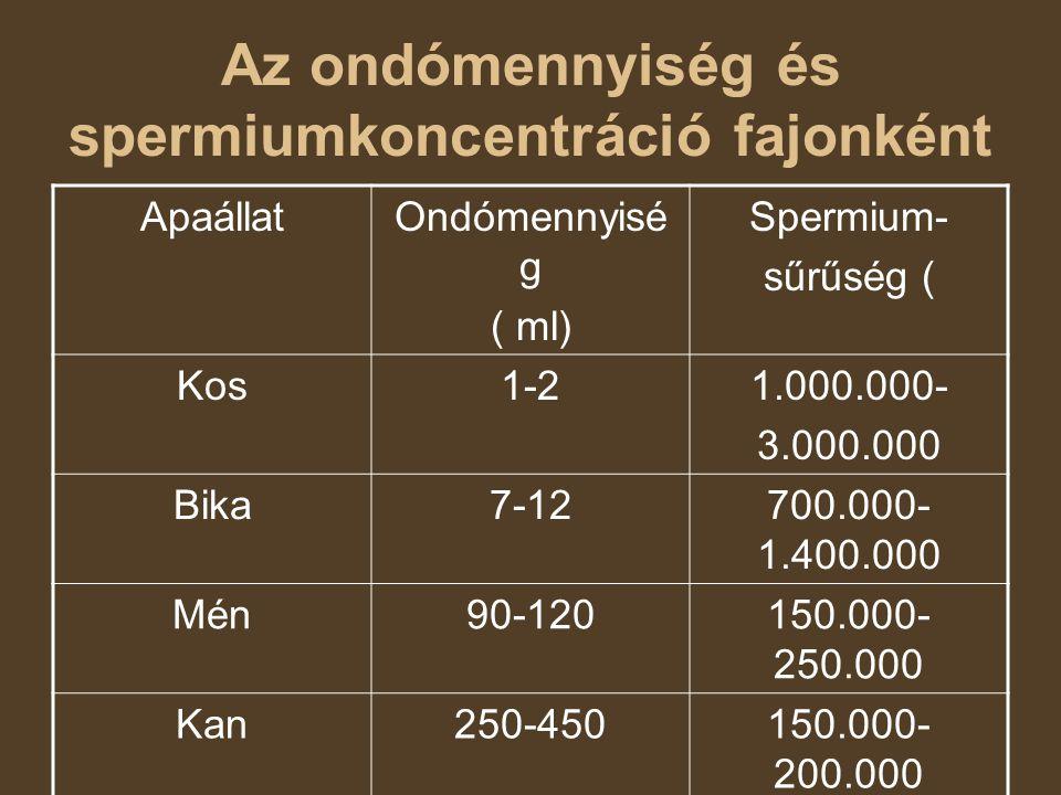 Az ondómennyiség és spermiumkoncentráció fajonként ApaállatOndómennyisé g ( ml) Spermium- sűrűség ( Kos1-21.000.000- 3.000.000 Bika7-12700.000- 1.400.000 Mén90-120150.000- 250.000 Kan250-450150.000- 200.000