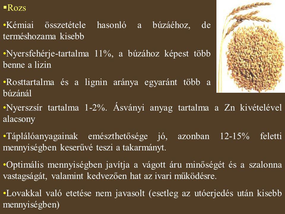  Rozs Kémiai összetétele hasonló a búzáéhoz, de terméshozama kisebb Nyersfehérje-tartalma 11%, a búzához képest több benne a lizin Rosttartalma és a