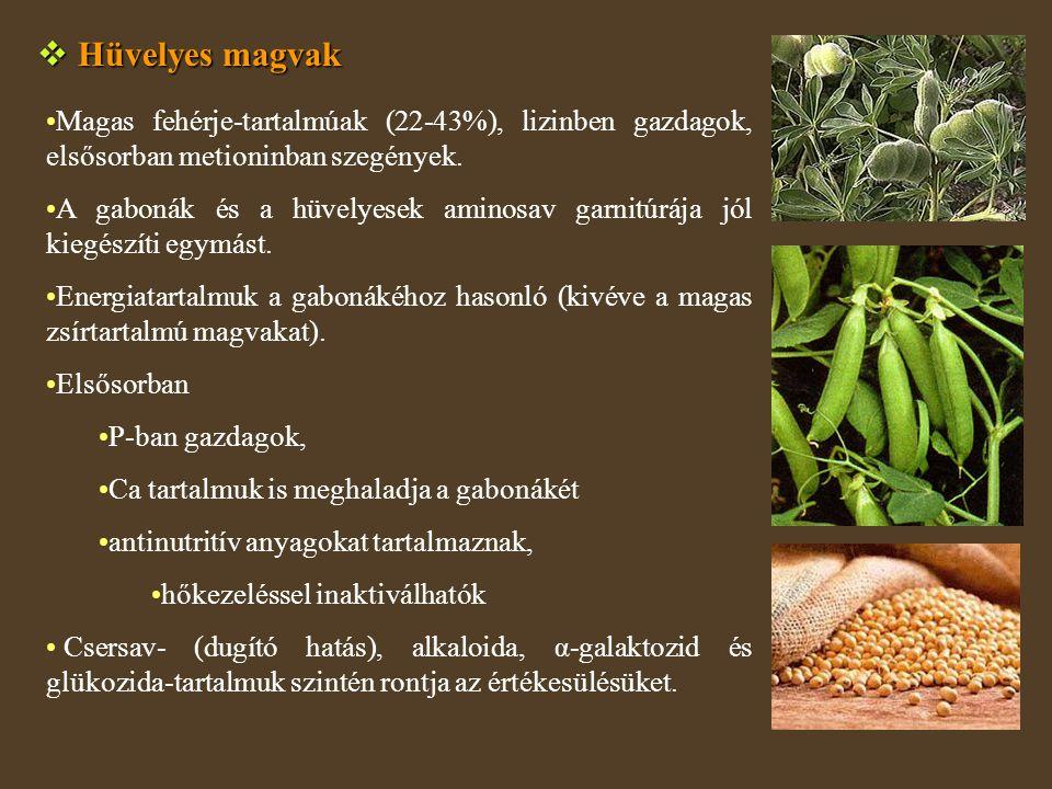  Hüvelyes magvak Magas fehérje-tartalmúak (22-43%), lizinben gazdagok, elsősorban metioninban szegények. A gabonák és a hüvelyesek aminosav garnitúrá