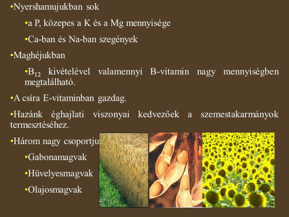 Nyershamujukban sok a P, közepes a K és a Mg mennyisége Ca-ban és Na-ban szegények Maghéjukban B 12 kivételével valamennyi B-vitamin nagy mennyiségben