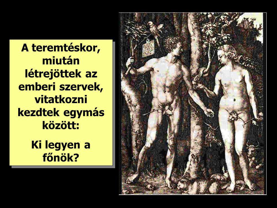 A teremtéskor, miután létrejöttek az emberi szervek, vitatkozni kezdtek egymás között: Ki legyen a főnök? A teremtéskor, miután létrejöttek az emberi