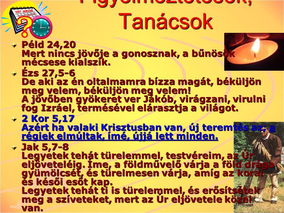 Figyelmeztetések, Tanácsok Péld 24,20 Mert nincs jövője a gonosznak, a bűnösök mécsese kialszik. Ézs 27,5-6 De aki az én oltalmamra bízza magát, békül