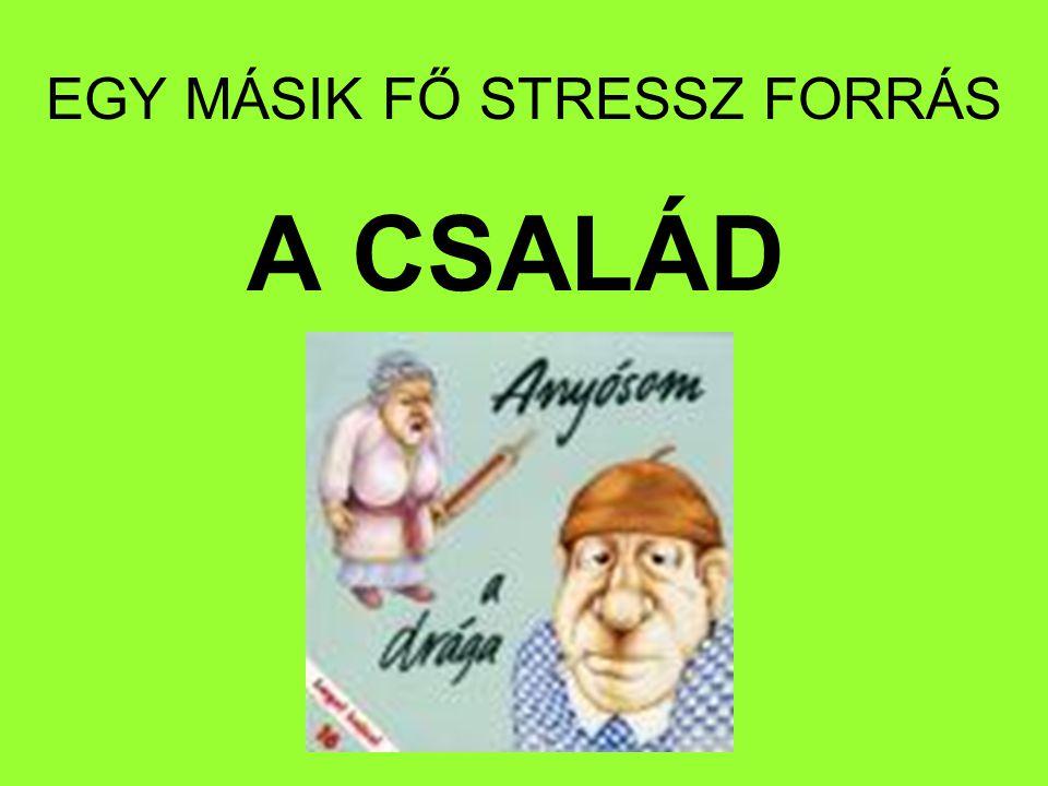 EGY MÁSIK FŐ STRESSZ FORRÁS A CSALÁD