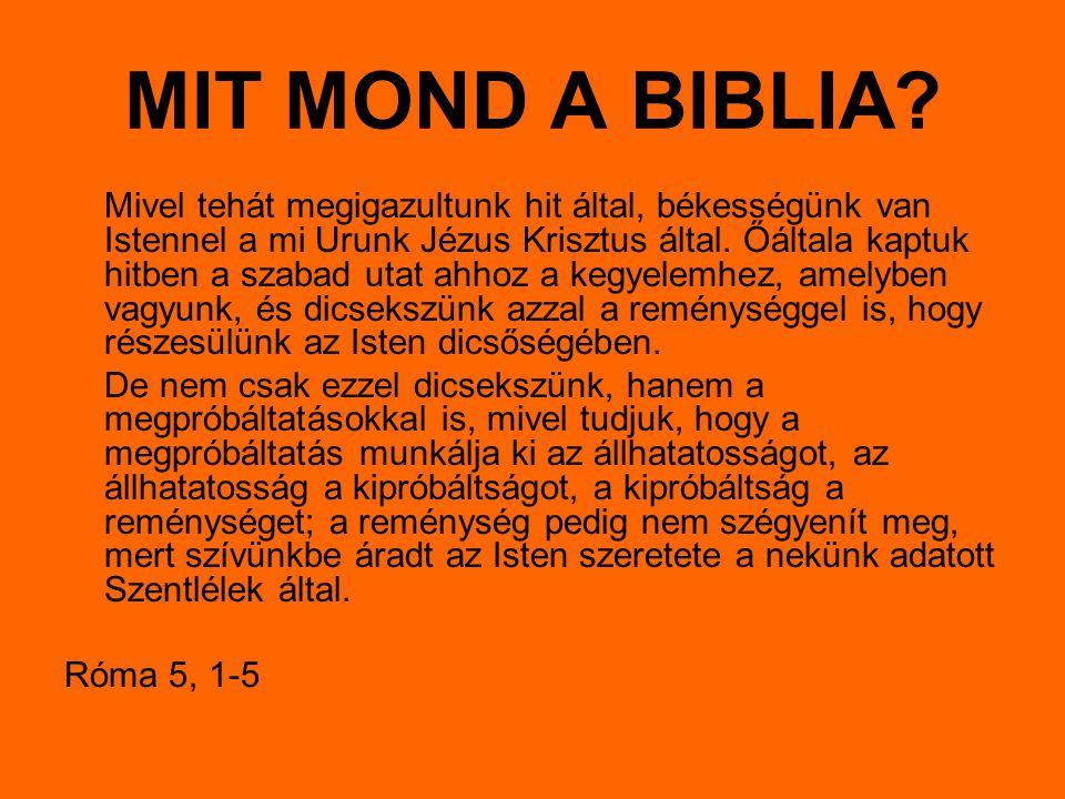 MIT MOND A BIBLIA? Mivel tehát megigazultunk hit által, békességünk van Istennel a mi Urunk Jézus Krisztus által. Őáltala kaptuk hitben a szabad utat