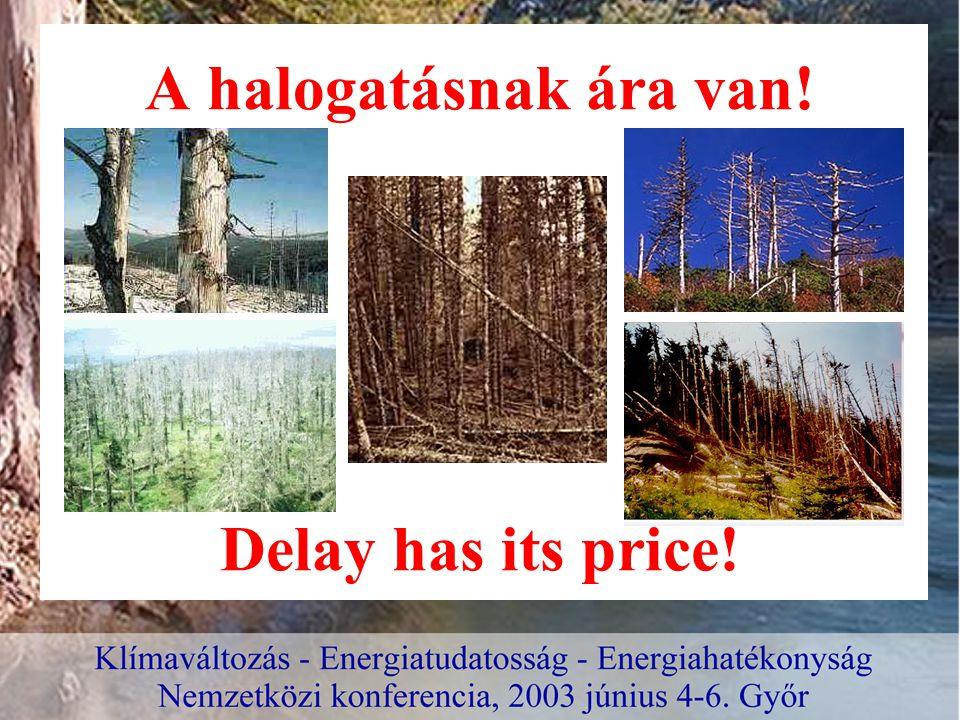 A halogatásnak ára van! Delay has its price!