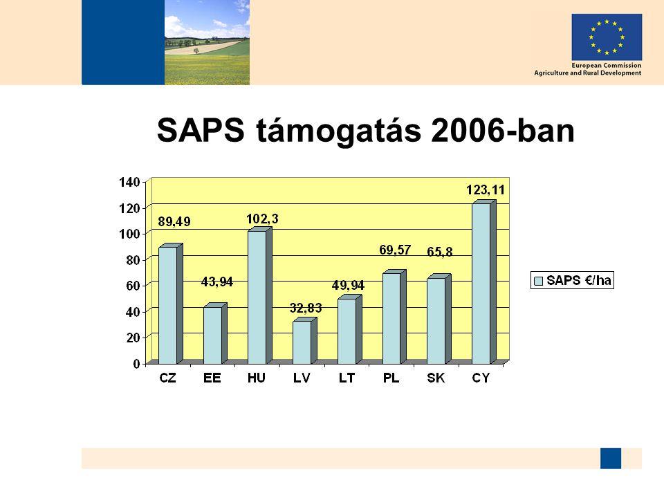 SAPS támogatás 2006-ban