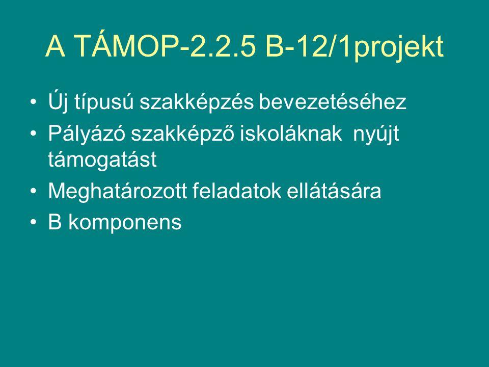 4.Szakmai dokumentumok készítése 2013.