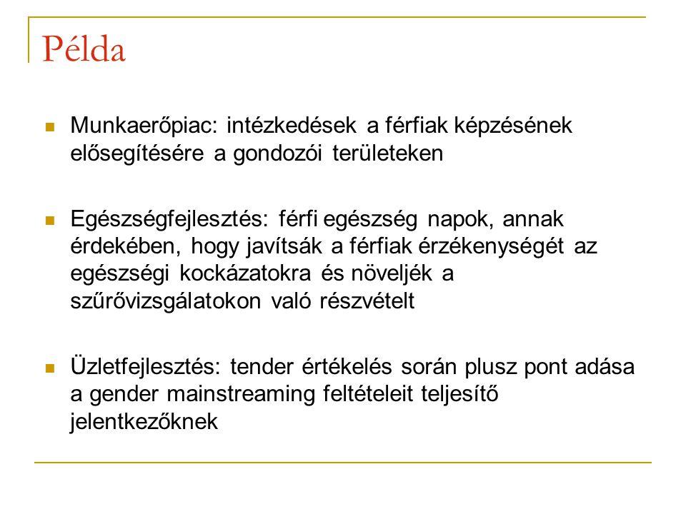 Munkaerőpiac: intézkedések a férfiak képzésének elősegítésére a gondozói területeken Egészségfejlesztés: férfi egészség napok, annak érdekében, hogy javítsák a férfiak érzékenységét az egészségi kockázatokra és növeljék a szűrővizsgálatokon való részvételt Üzletfejlesztés: tender értékelés során plusz pont adása a gender mainstreaming feltételeit teljesítő jelentkezőknek