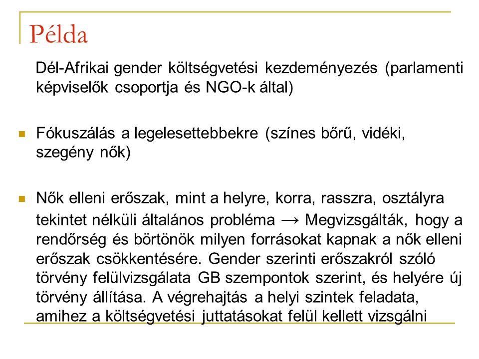 Példa Dél-Afrikai gender költségvetési kezdeményezés (parlamenti képviselők csoportja és NGO-k által) Fókuszálás a legelesettebbekre (színes bőrű, vidéki, szegény nők) Nők elleni erőszak, mint a helyre, korra, rasszra, osztályra tekintet nélküli általános probléma → Megvizsgálták, hogy a rendőrség és börtönök milyen forrásokat kapnak a nők elleni erőszak csökkentésére.