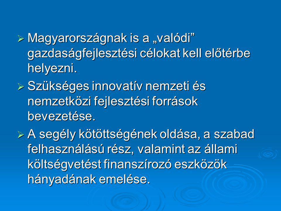 """ Magyarországnak is a """"valódi"""" gazdaságfejlesztési célokat kell előtérbe helyezni.  Szükséges innovatív nemzeti és nemzetközi fejlesztési források b"""