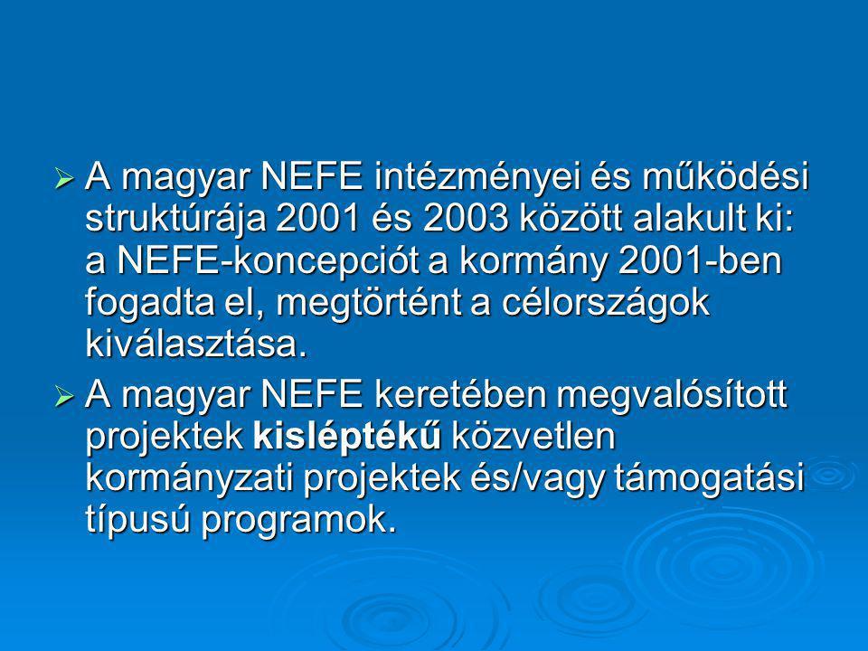  A magyar NEFE intézményei és működési struktúrája 2001 és 2003 között alakult ki: a NEFE-koncepciót a kormány 2001-ben fogadta el, megtörtént a célo