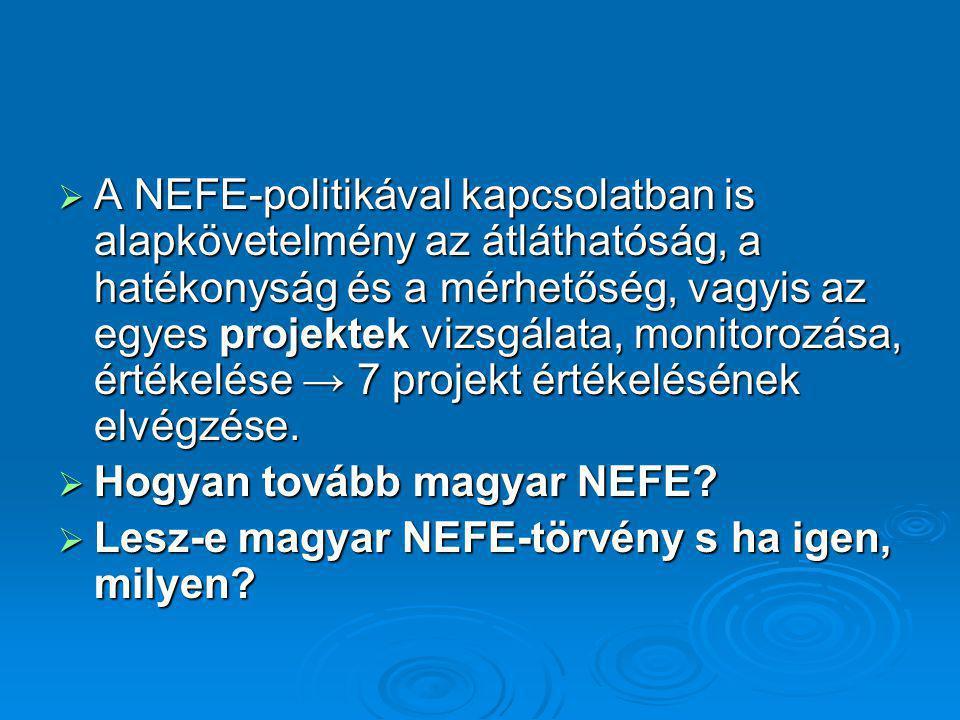  A NEFE-politikával kapcsolatban is alapkövetelmény az átláthatóság, a hatékonyság és a mérhetőség, vagyis az egyes projektek vizsgálata, monitorozás