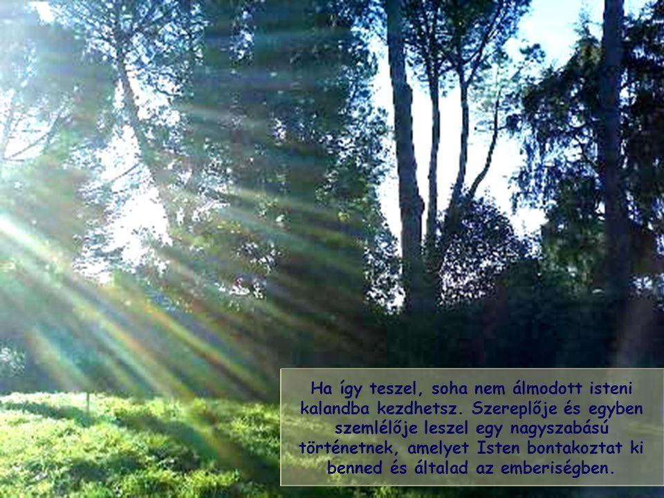Az életben a keresztény és minden jóakaratú ember arra hivatott, hogy a nap felé haladjon saját sugarának fényében, mely más mint a többi emberé.