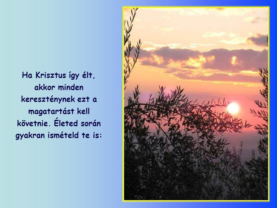 De nem erre a napra várt-e Krisztus, hogy Isten akaratához alakítsa a magáét.