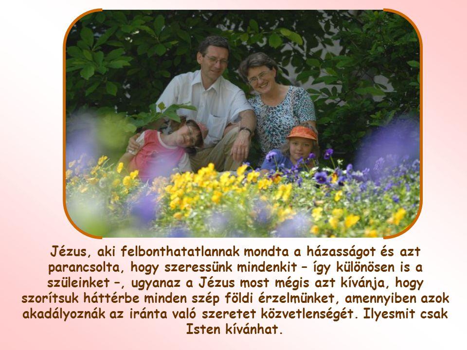 Egész családod be akar vonni a lelkiismeretlen, felelőtlen nagyvilági életbe.