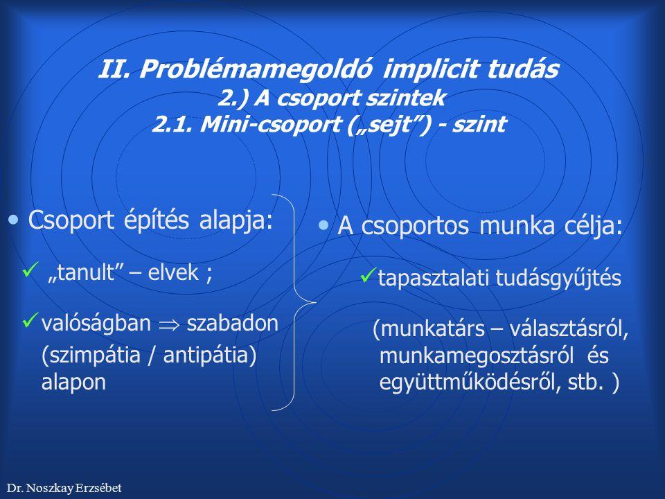 """II. Problémamegoldó implicit tudás 2.) A csoport szintek 2.1. Mini-csoport (""""sejt"""") - szint Csoport építés alapja: """"tanult"""" – elvek ; valóságban  sza"""