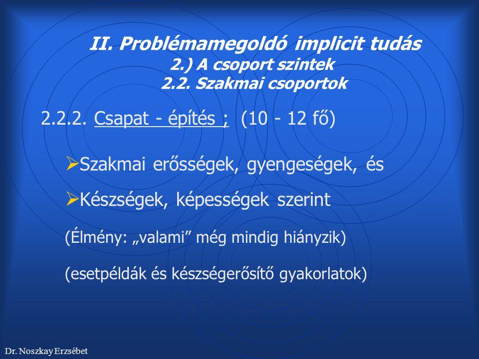 II. Problémamegoldó implicit tudás 2.) A csoport szintek 2.2. Szakmai csoportok 2.2.2. Csapat - építés ; (10 - 12 fő)  Szakmai erősségek, gyengeségek