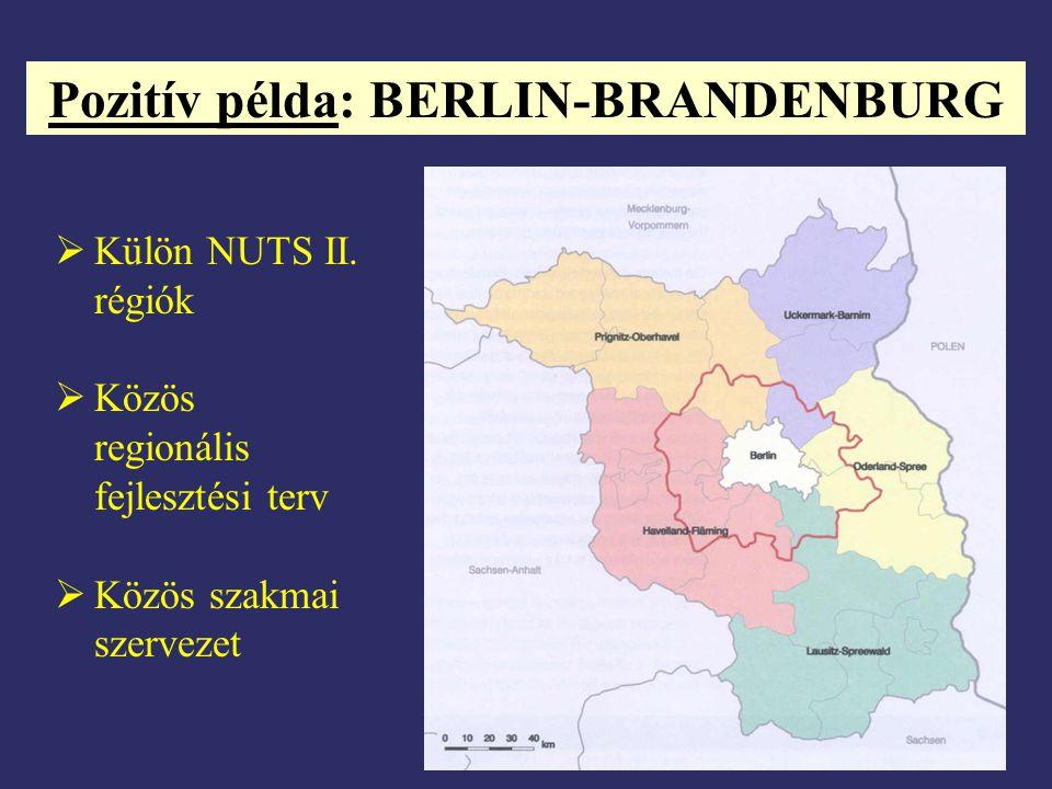 Pozitív példa: BERLIN-BRANDENBURG  Külön NUTS II. régiók  Közös regionális fejlesztési terv  Közös szakmai szervezet