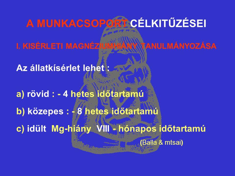 A MUNKACSOPORT CÉLKITŰZÉSEI I.