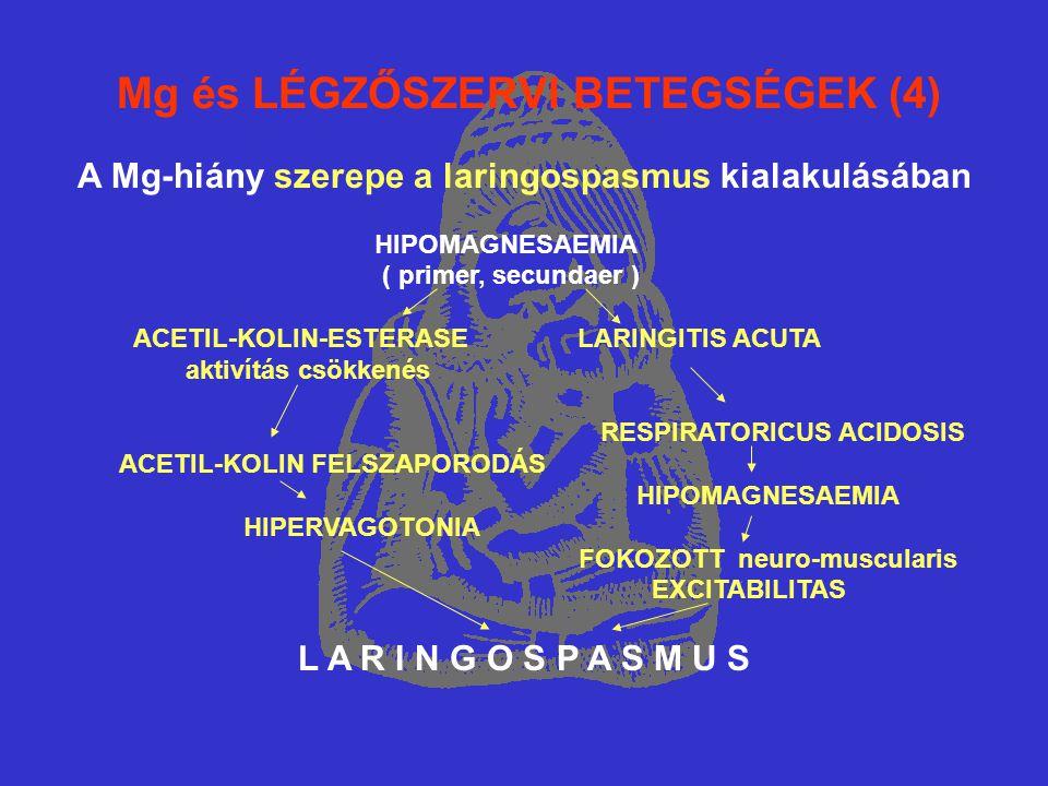 Mg és LÉGZŐSZERVI BETEGSÉGEK (4) A Mg-hiány szerepe a laringospasmus kialakulásában HIPOMAGNESAEMIA ( primer, secundaer ) ACETIL-KOLIN-ESTERASE LARINGITIS ACUTA aktivítás csökkenés RESPIRATORICUS ACIDOSIS ACETIL-KOLIN FELSZAPORODÁS HIPOMAGNESAEMIA HIPERVAGOTONIA FOKOZOTT neuro-muscularis EXCITABILITAS L A R I N G O S P A S M U S