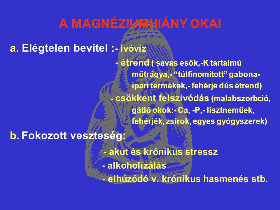 Mg-HIÁNY – VASHIÁNYOS ANAEMIA (3)