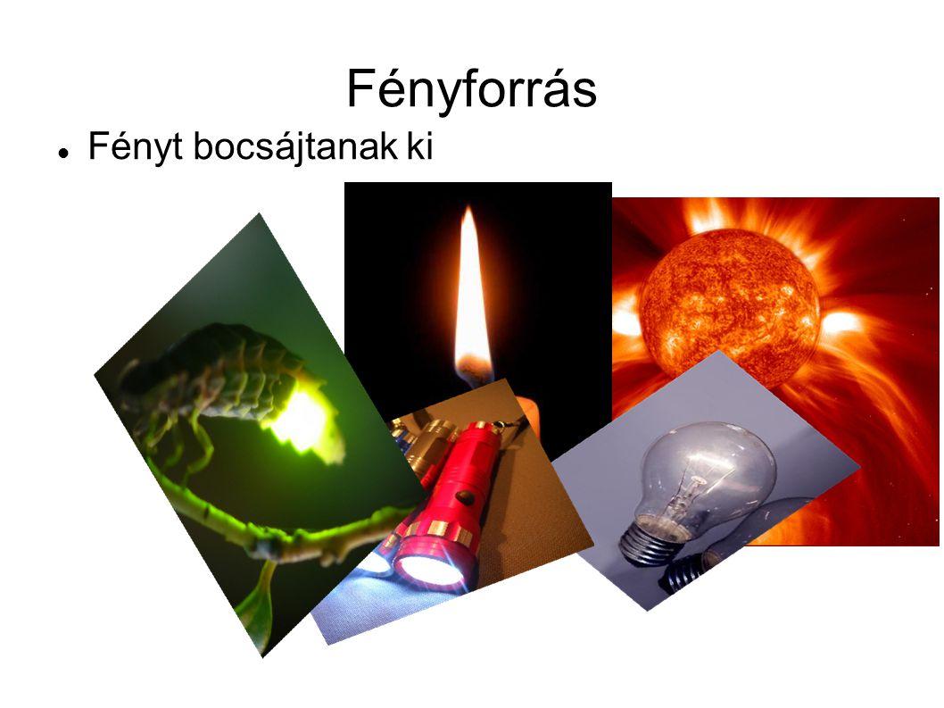 A fény terjedése A fény egyenes vonalban terjed A fény terjedését fénysugarakkal szemléltetjük Fényforrások fénye megvilágítja a tárgyakat