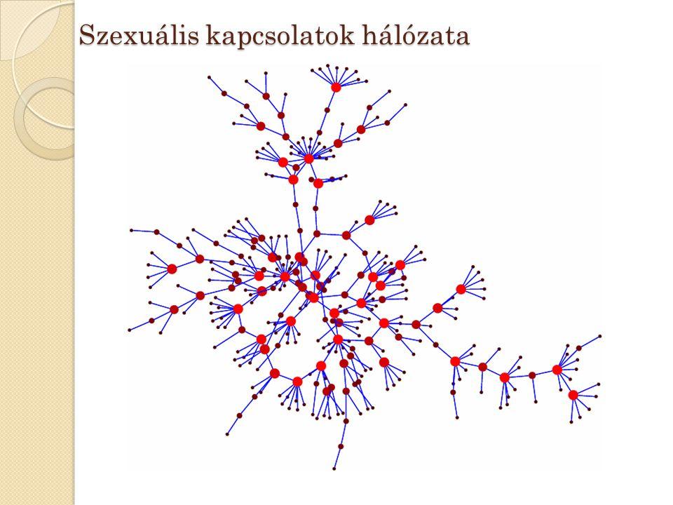 Szexuális kapcsolatok hálózata