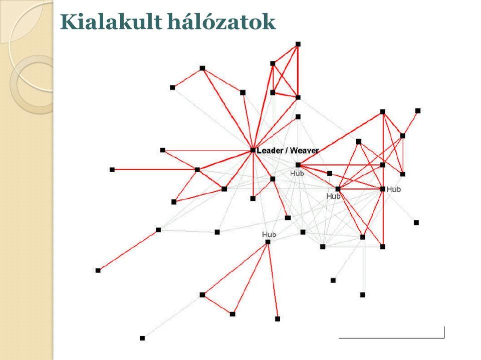 Kialakult hálózatok