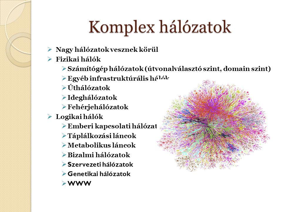 Komplex hálózatok  Nagy hálózatok vesznek körül  Fizikai hálók  Számítógép hálózatok (útvonalválasztó szint, domain szint)  Egyéb infrastruktúrális hálók  Úthálózatok  Ideghálózatok  Fehérjehálózatok  Logikai hálók  Emberi kapcsolati hálózatok  Táplálkozási láncok  Metabolikus láncok  Bizalmi hálózatok  Szervezeti hálózatok  Genetikai hálózatok  WWW