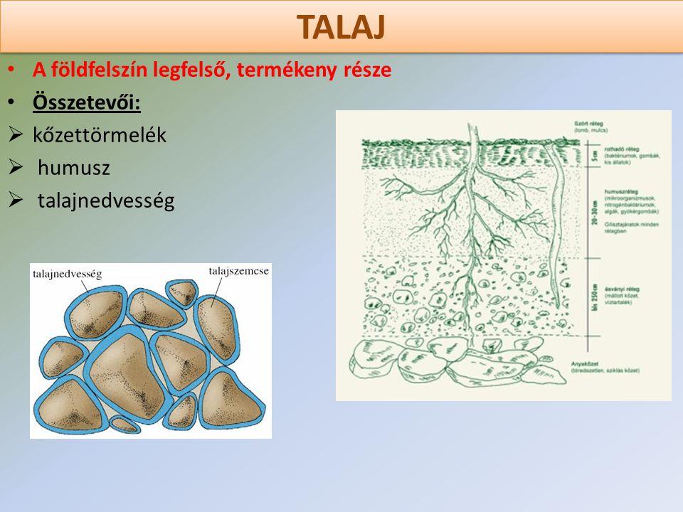 TALAJ A földfelszín legfelső, termékeny része Összetevői:  kőzettörmelék  humusz  talajnedvesség