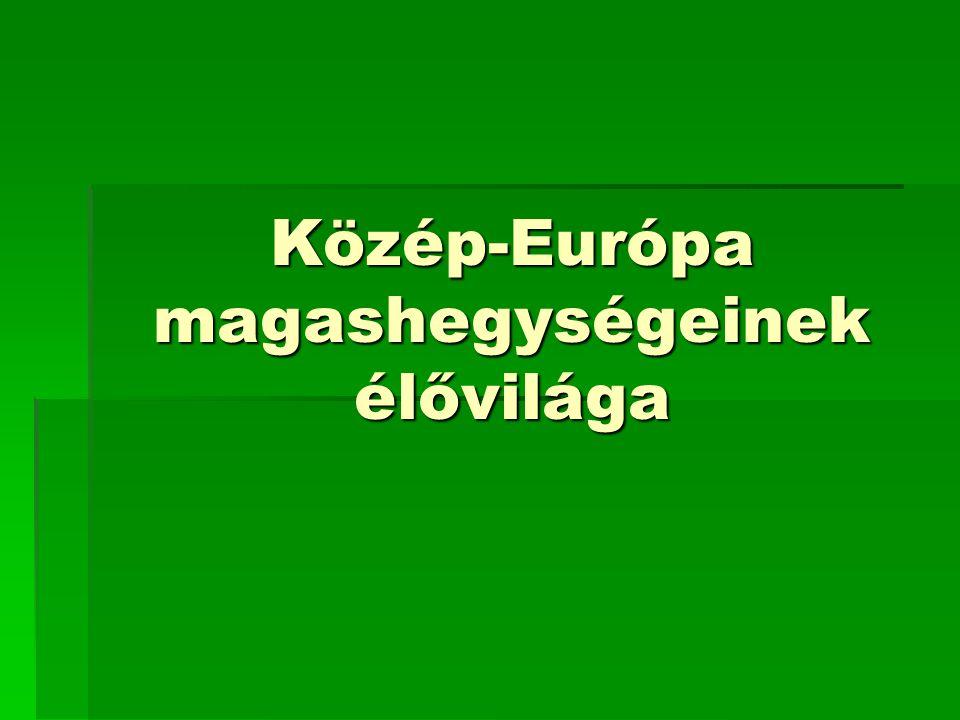 Közép-Európa magashegységeinek élővilága