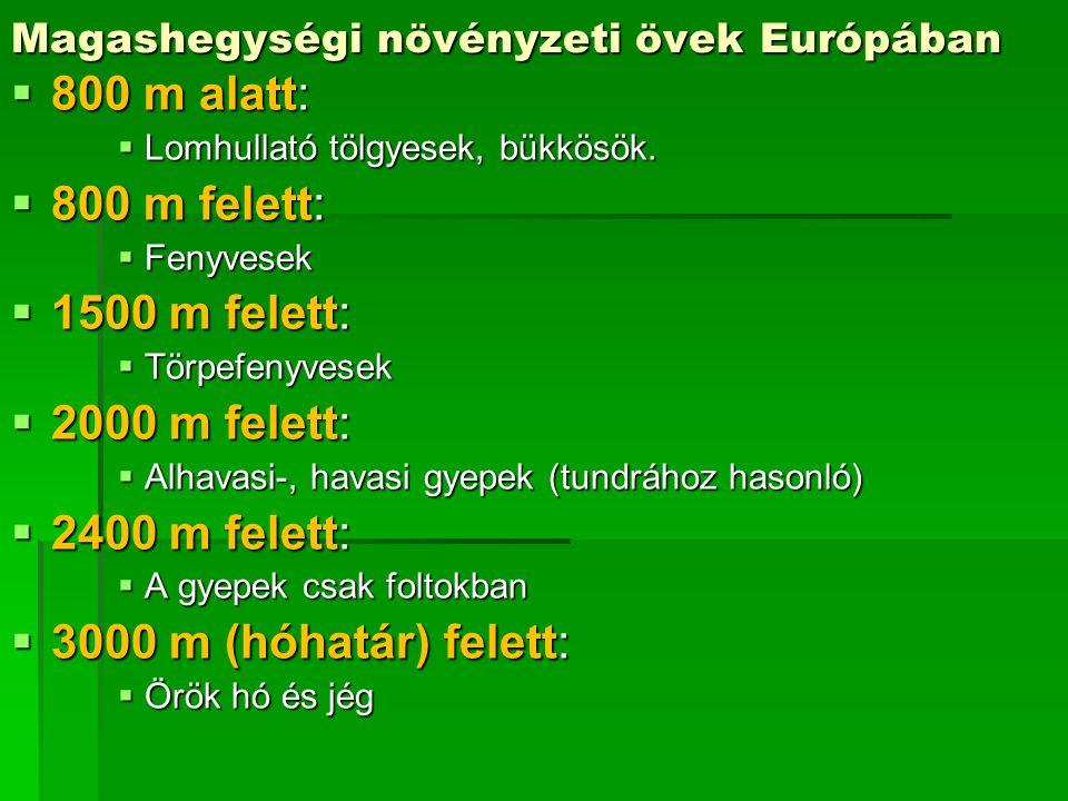 Magashegységi növényzeti övek Európában  800 m alatt:  Lomhullató tölgyesek, bükkösök.  800 m felett:  Fenyvesek  1500 m felett:  Törpefenyvesek