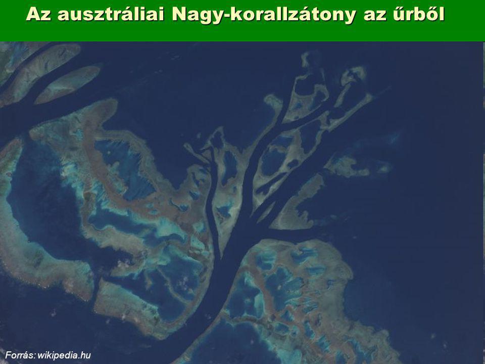 Az ausztráliai Nagy-korallzátony az űrből Forrás: wikipedia.hu