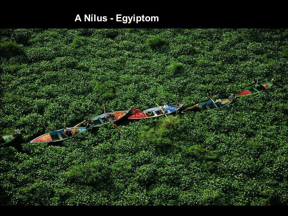 A Nílus - Egyiptom