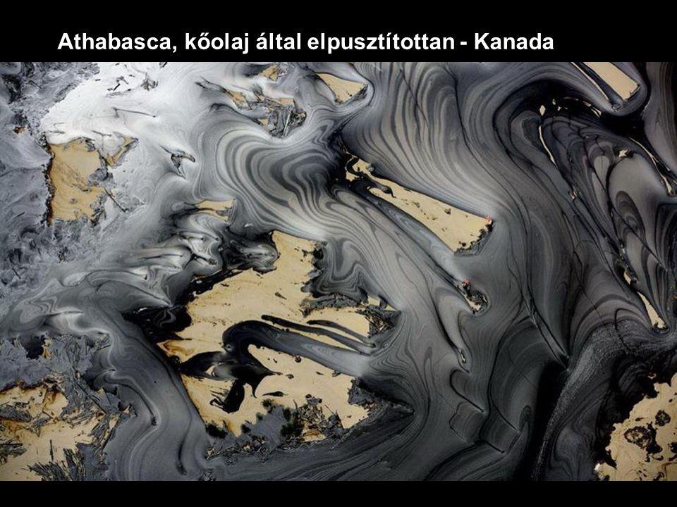 Athabasca, kőolaj által elpusztítottan - Kanada