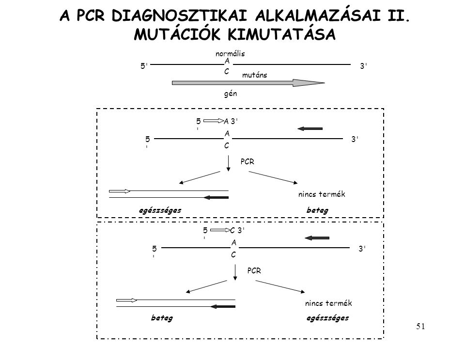 51 A PCR DIAGNOSZTIKAI ALKALMAZÁSAI II. MUTÁCIÓK KIMUTATÁSA A normális C gén mutáns 5'3' A C 5'5' A5'5' PCR egészséges nincs termék beteg A C 5'5' 3'