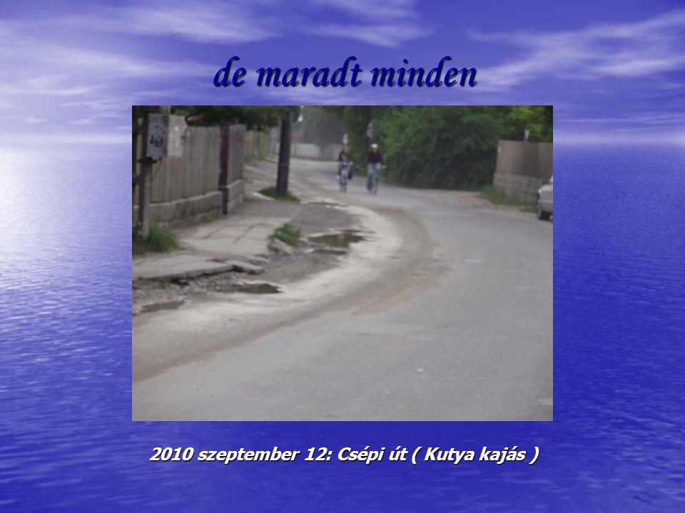 de maradt minden 2010 szeptember 12: Csépi út ( Kutya kajás )