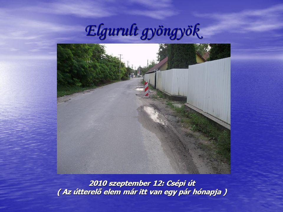 Elgurult gyöngyök 2010 szeptember 12: Csépi út ( Az útterelő elem már itt van egy pár hónapja )