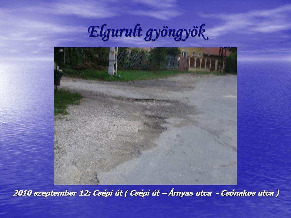 Elgurult gyöngyök 2010 szeptember 12: Csépi út ( Csépi út – Árnyas utca - Csónakos utca )